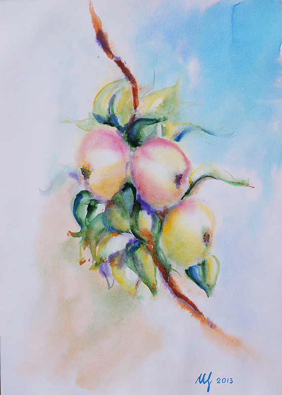 Apples on a branch. Watercolor, 29x40 cm, 11-2013