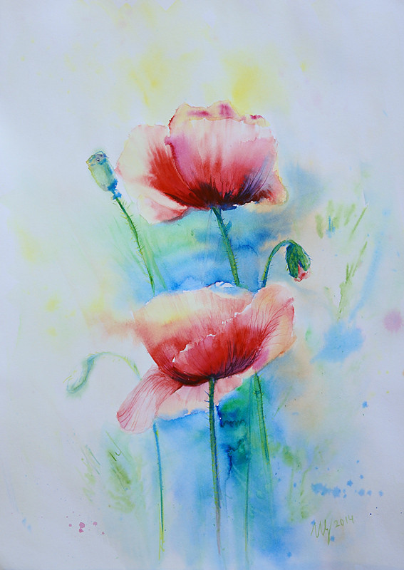 Red Poppy. Watercolor on paper. 30x40 cm. 2014
