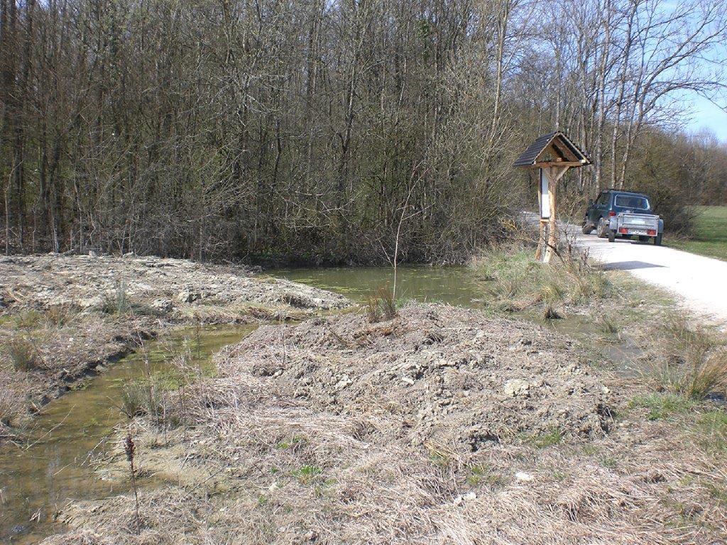 Biotop am  Dragoner Weg