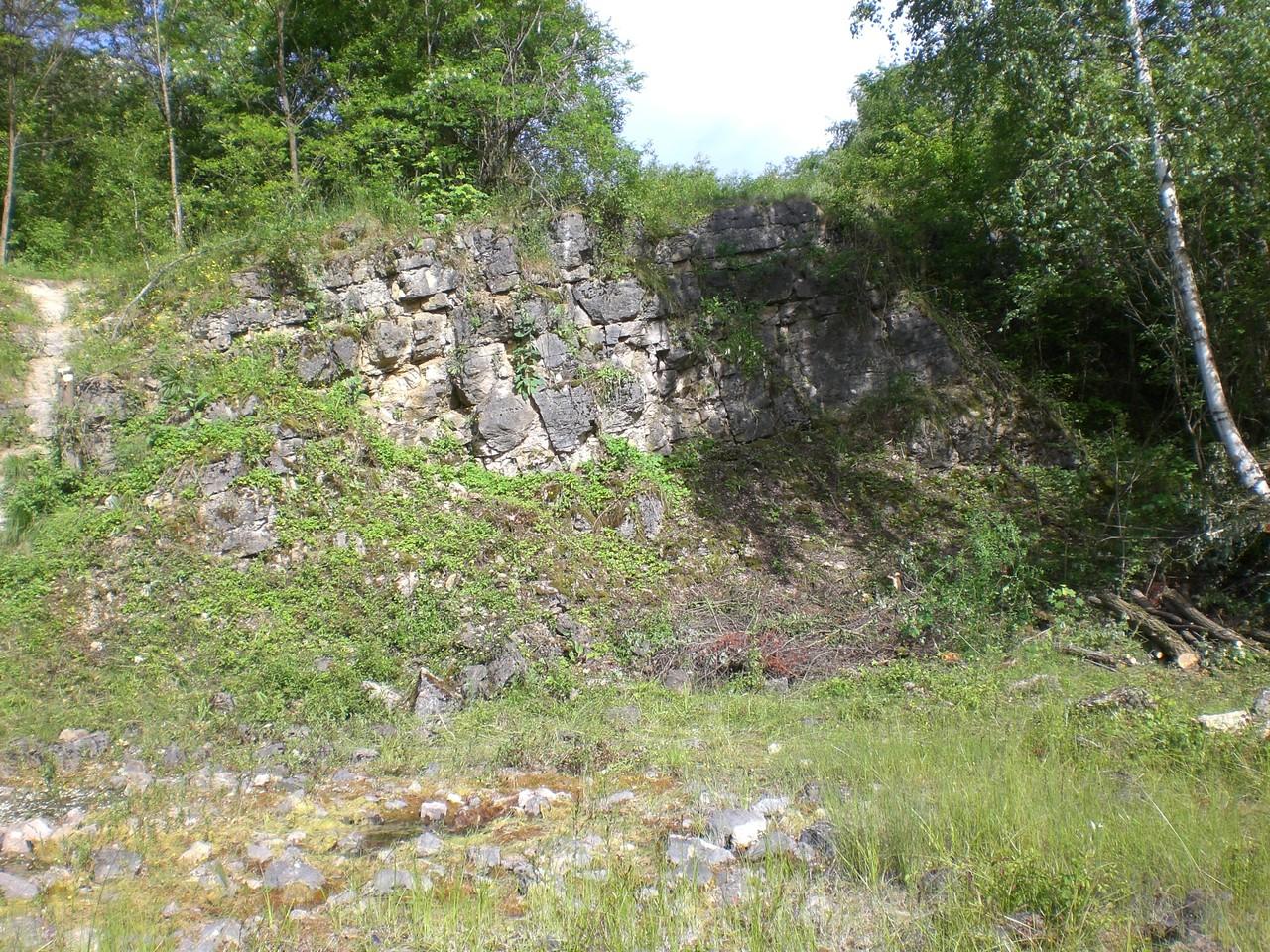 Steinbruch Birzberg