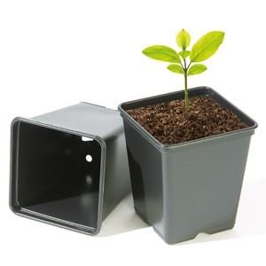 Töpfe für den Hanfanbau Cannabis Anbau für alle Pflanzenphasen