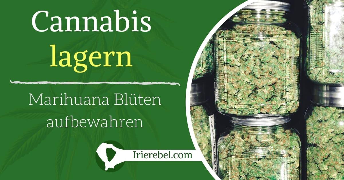 Lagern von Cannabis - Marihuana Blüten