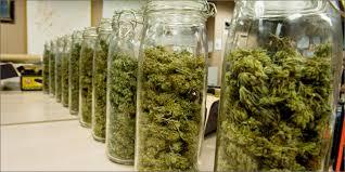 Marihuana in Gläsern verpackt