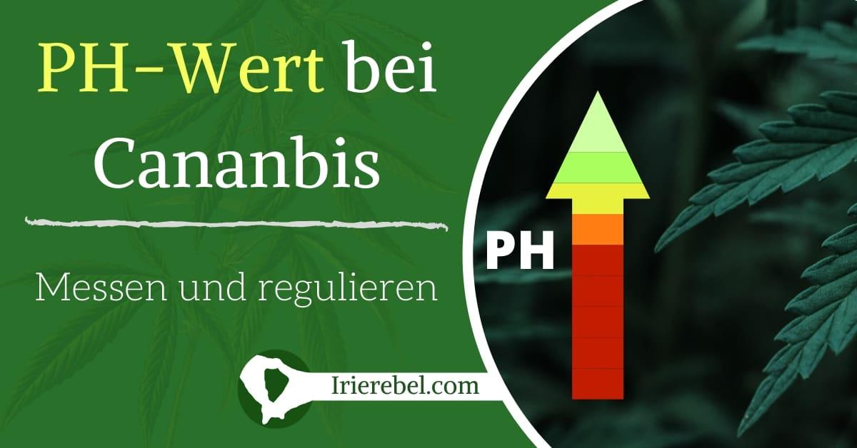 pH Wert bei cannabis messen und regulieren