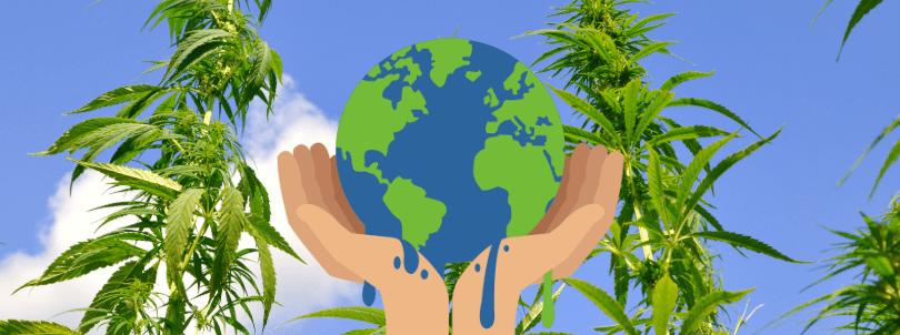 Wie kann Hanf zur Reduzierung der globalen Erwärmung beitragen?