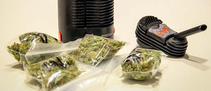Cannabis Blüten verpackt