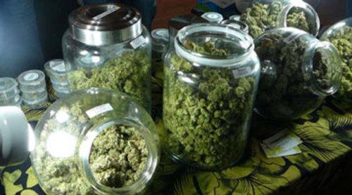 Cannabis Blüten im Glas