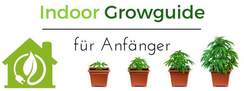Indoor Hanfanbau Growguide