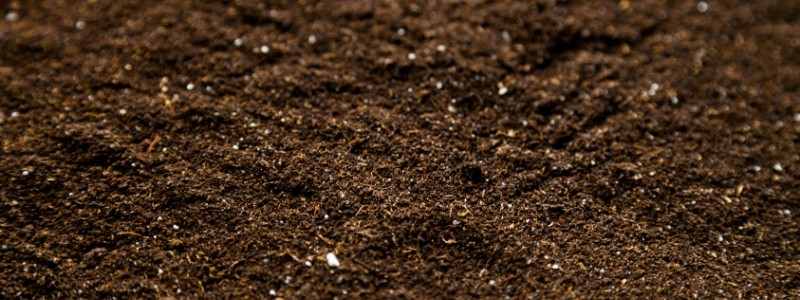 Erde und Nährstoffe