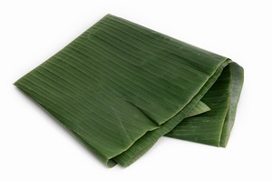 Bananenblatt / Banana Leaves