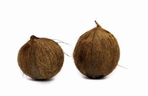 Kokosnuss / Coconut