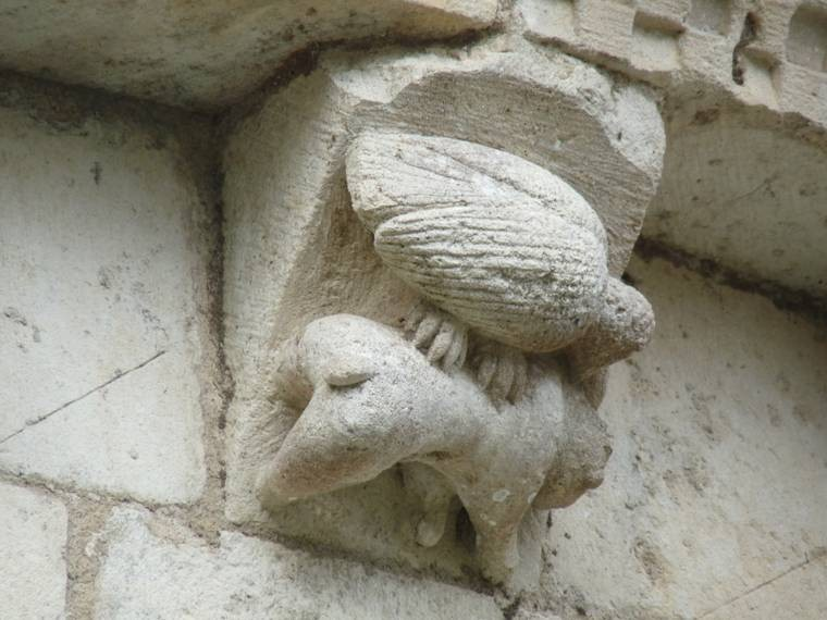 une oie sur un âne
