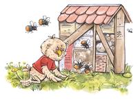 Steinkauz Fabian kniet vor einem großen Insektenhotel und betrachtet die dort hinein fliegenden Wildbienen