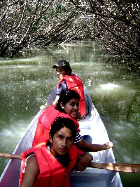 Entre los manglares de la Isla Corazón frente a Bahía de Caráquez.