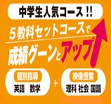 個別指導塾ブレイン/中学生人気コース5教科セットコース