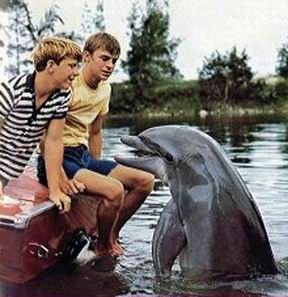 Flipper el Delfin