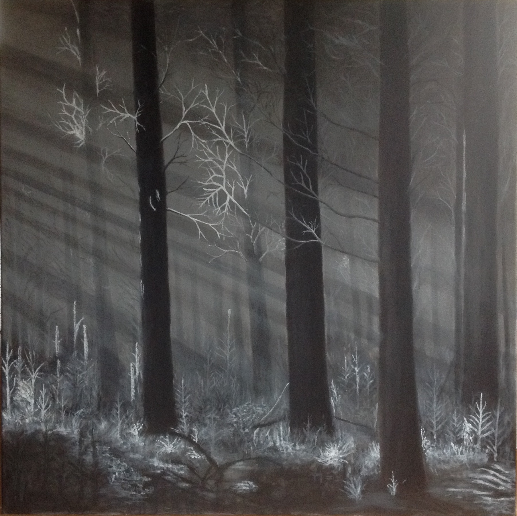 Winterzon, Acryl op linnen, 100 x 100 cm.