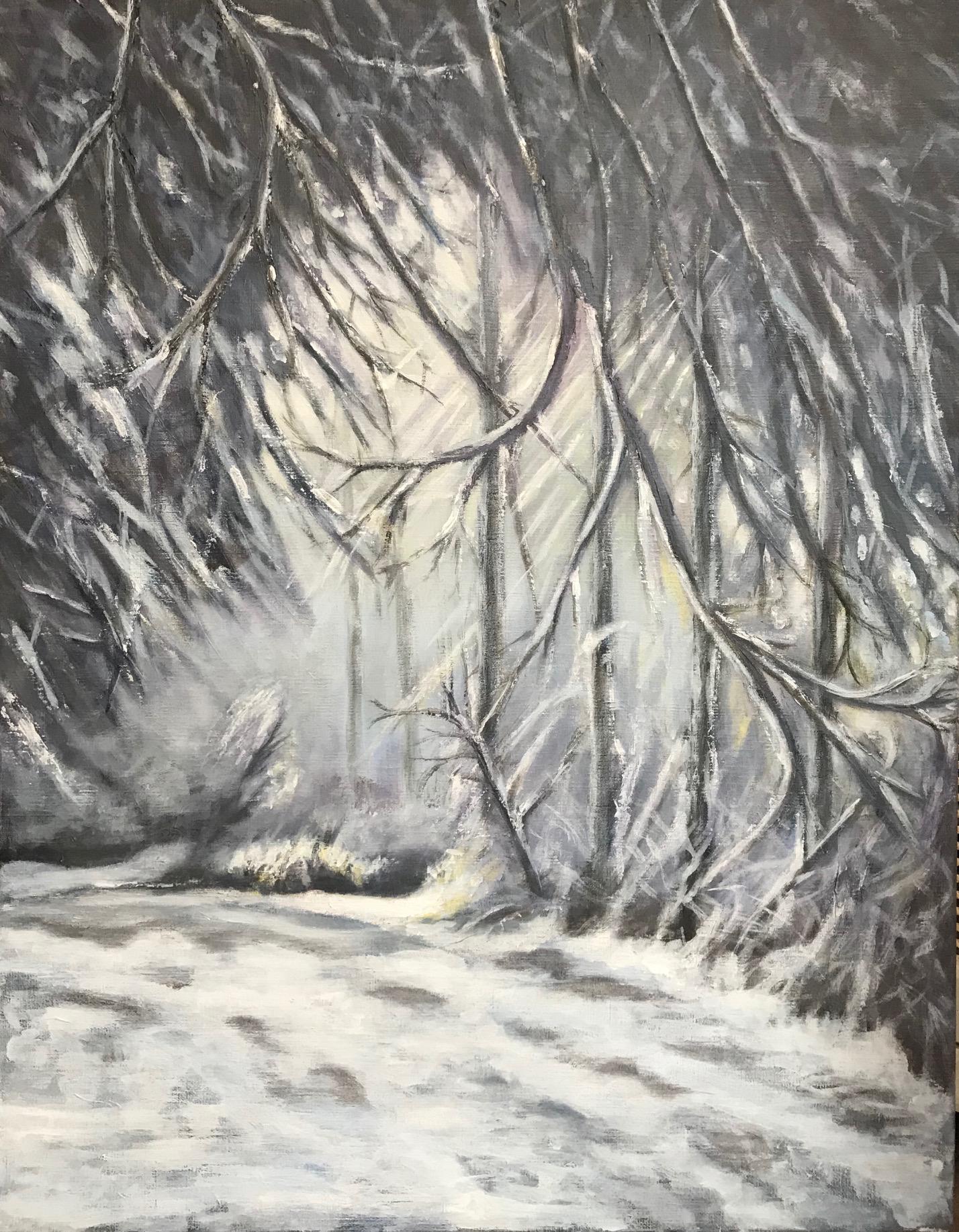 Winter op de Utrechtse Heuvelrug, acryl op linnen, 70 x 90 cm.