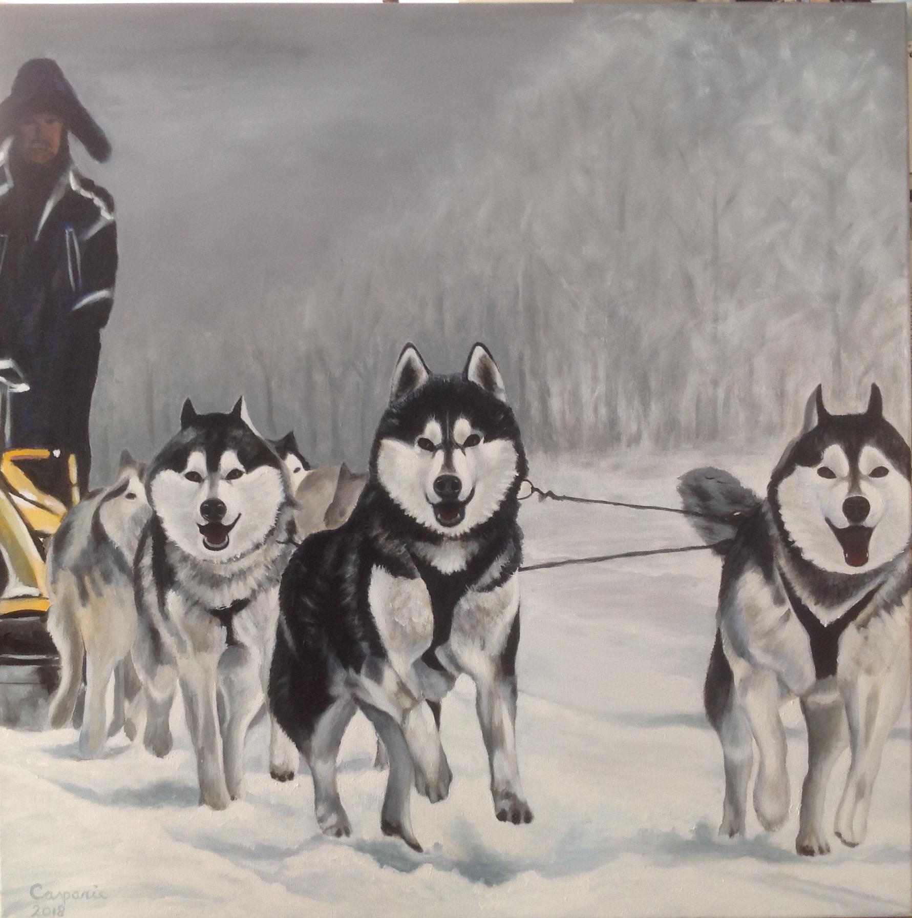 Sledehonden, acryl op linnen, 100 x 100 cm.