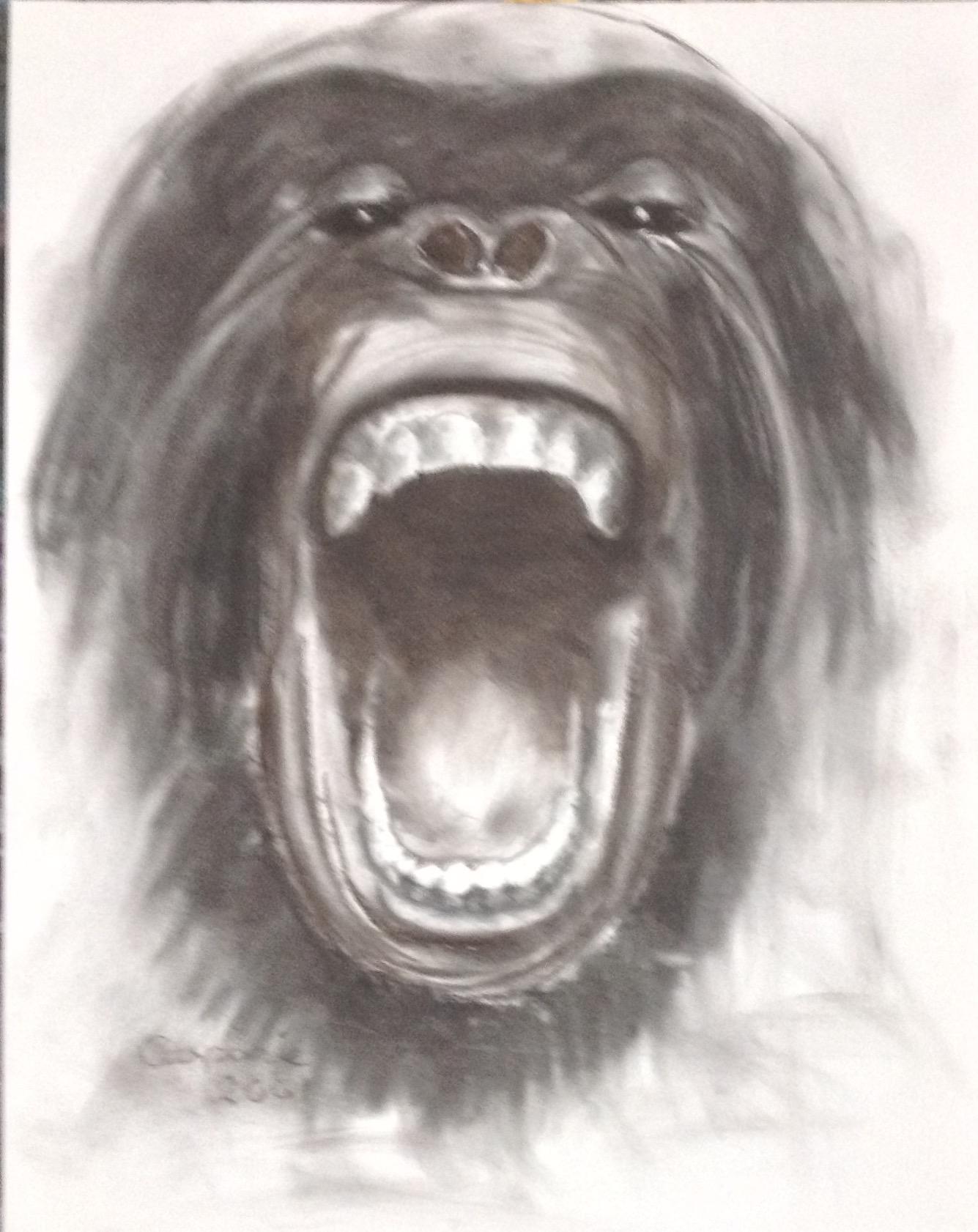 Gorilla, Houtskool op papier, A2 formaat