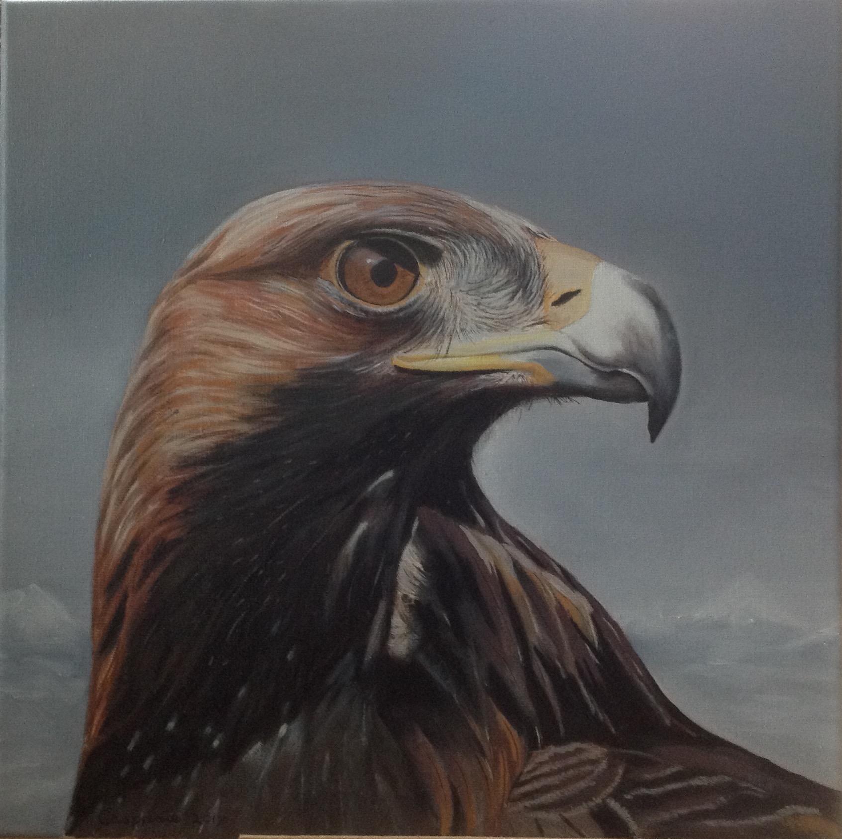 Golden Eagle, olieverf op linnen, 50 x 50 cm.