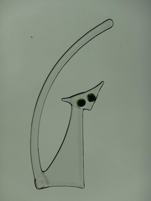 Katze (zirka 25x14cm) transparent mit Augen Preis Fr. 20.--