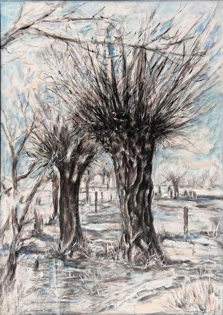 Niederrhein im Winter