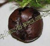 Soufflé au chocolat fenouil