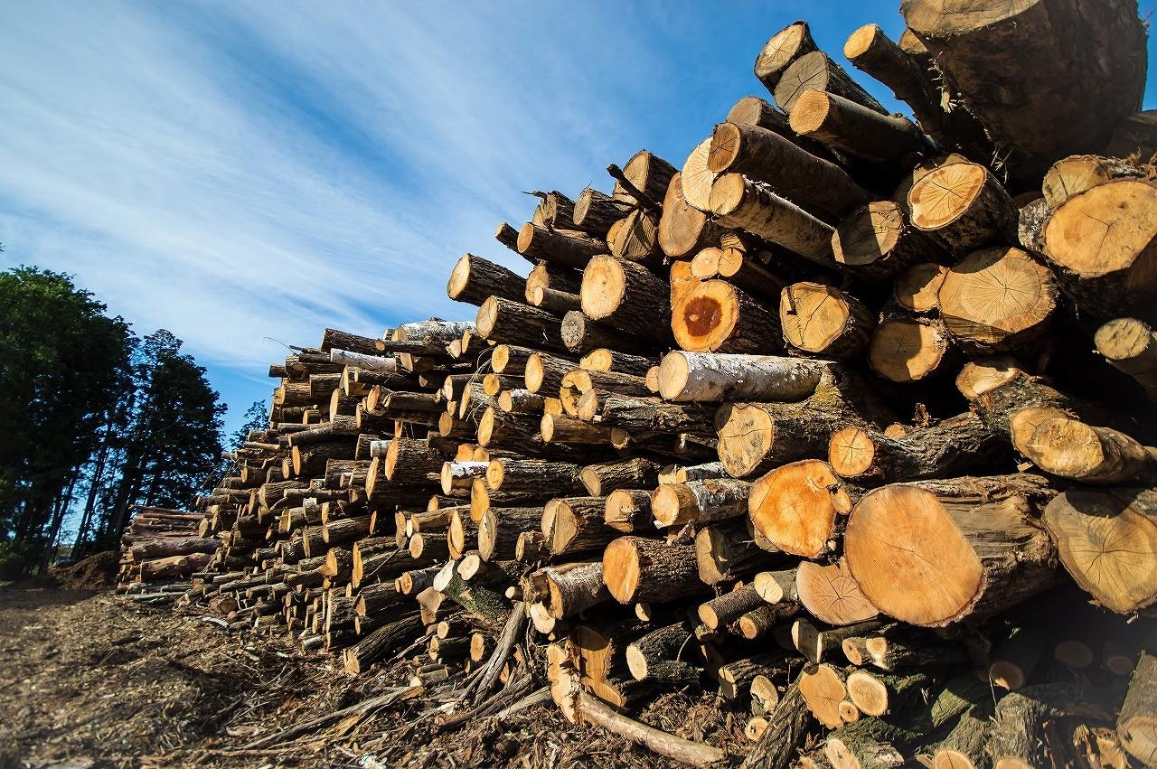 当組合では丸太や薪の販売をしております。