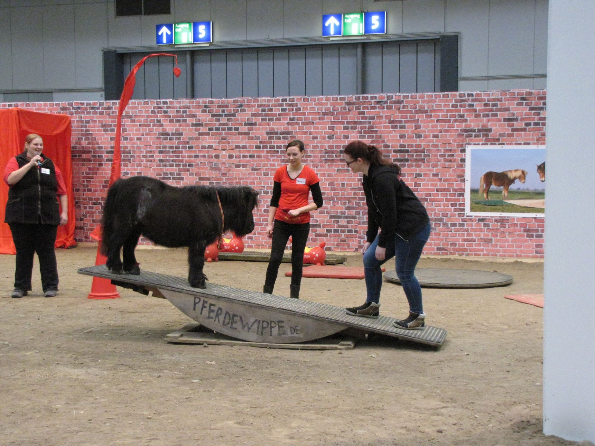 Auch Zuschauer durften mal zusammen mit den Ponies wippen.