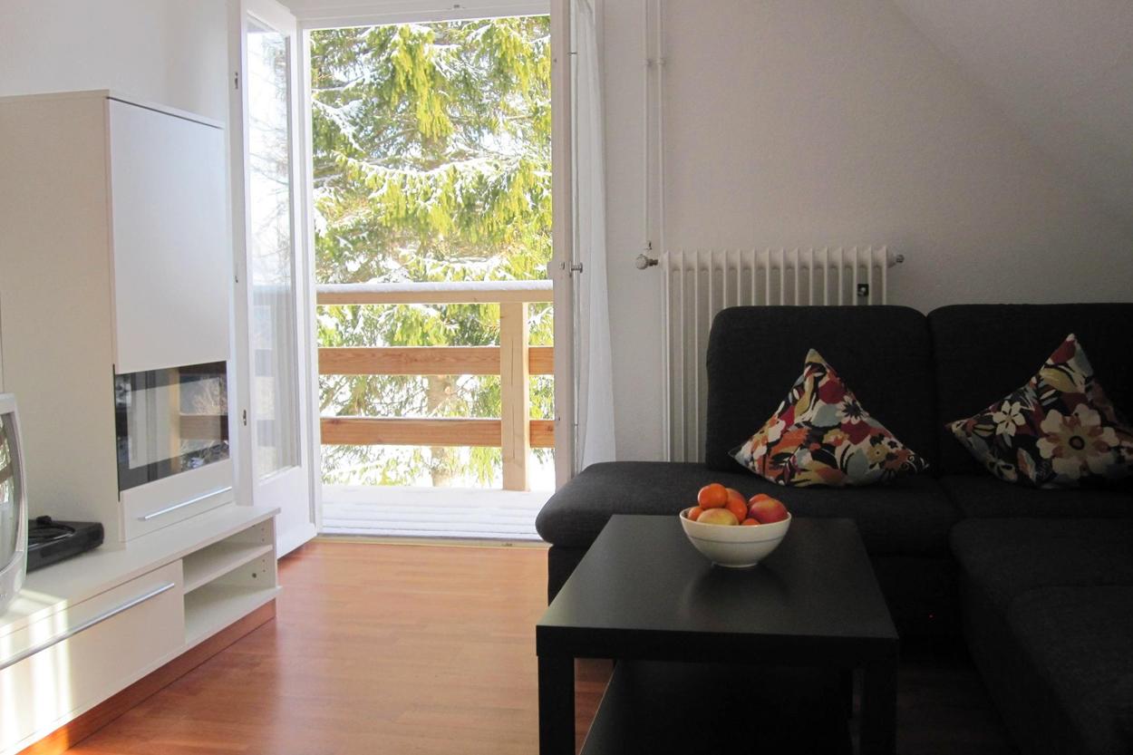 Gemütliches Wohnzimmer mit Schlafcouch, Flatscreen TV mit HDMI, Ausblick ins Tal und Balkonzugang