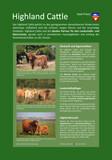 Infotafel Stadt Preetz: Highland Cattle