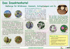 Infotafel Lehrpfad Bothkamp: Das Insektenhotel