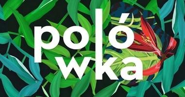 """Plenerowe Kino """"Polówka"""""""
