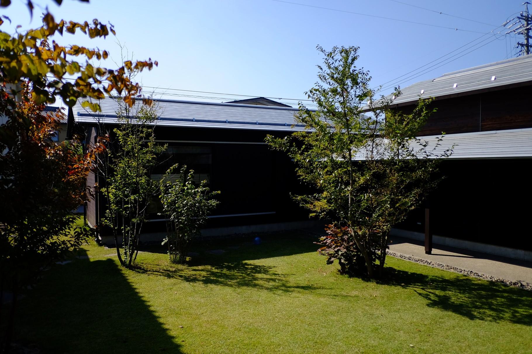 中庭がとてもきもちよい。カツラの木などの手入れも中川さんがするんですって。