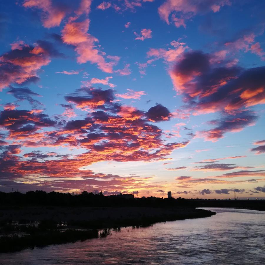 8月16日 am 4:56 多摩川宿河原付近