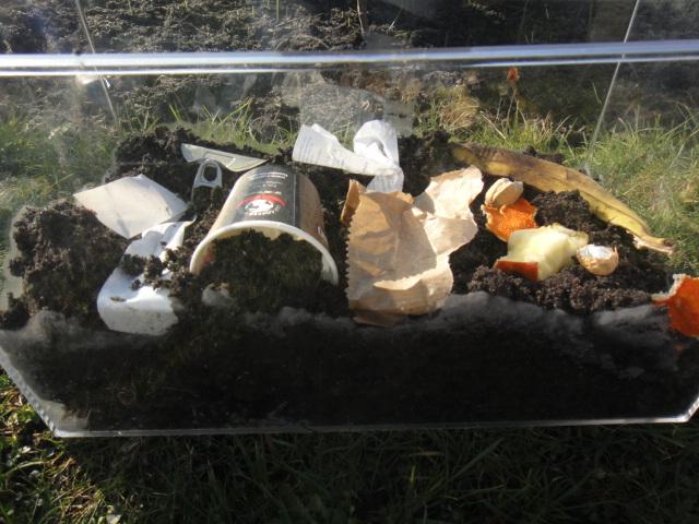 Verschiedene Sorten Müll auf die Erde geben, z.B. Obst-, Gemüse oder Nussschale, Zeitung, Einwegplastik, Aludose etc.