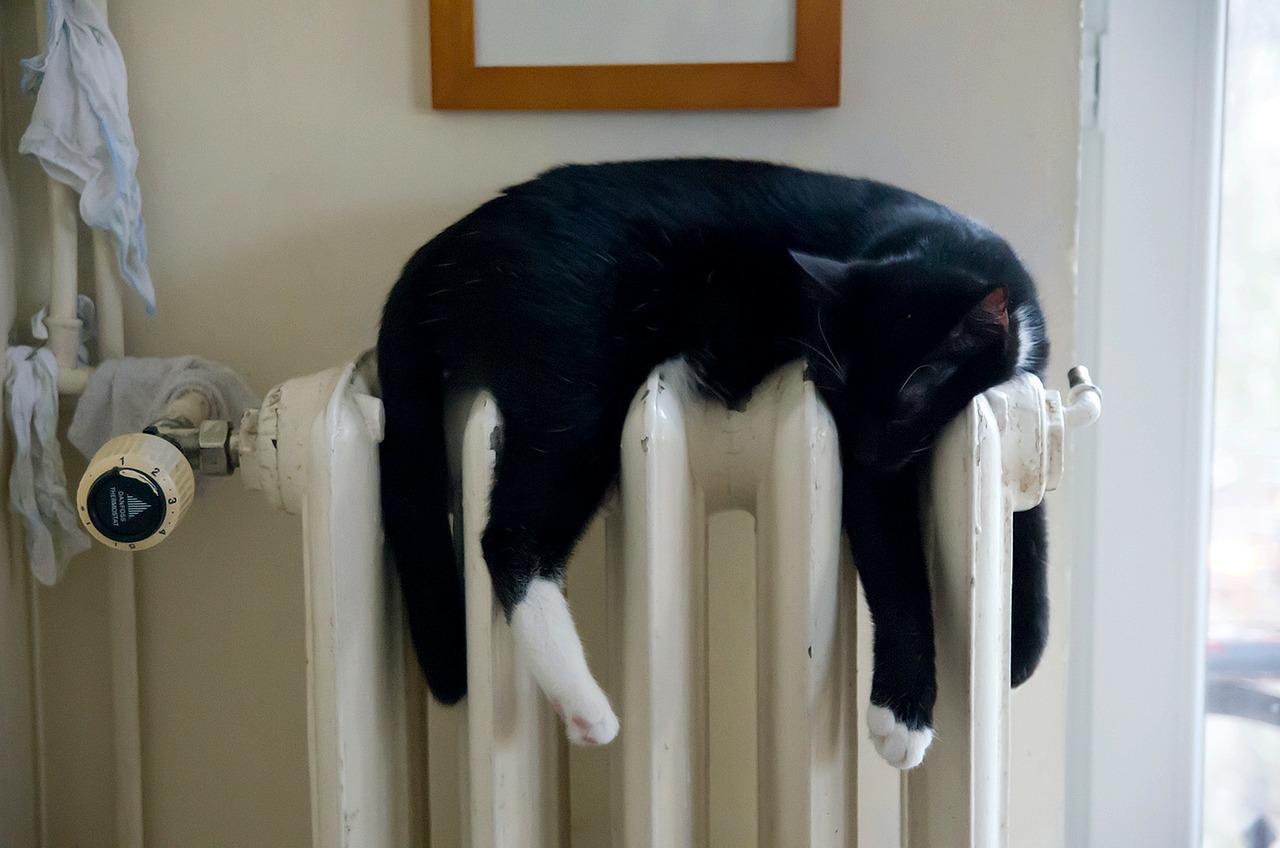 4. Heizung auf 5 - total unnötig: Nicht nur ist ihr Energieverbrauch hoch, sie trocknet auch die Luft aus und sorgt für schlechteres Raumklima. Ein gemütlicher Kuschelpullover hält genauso warm. Und jedes Grad weniger spart im Jahr rund 6% Energie!