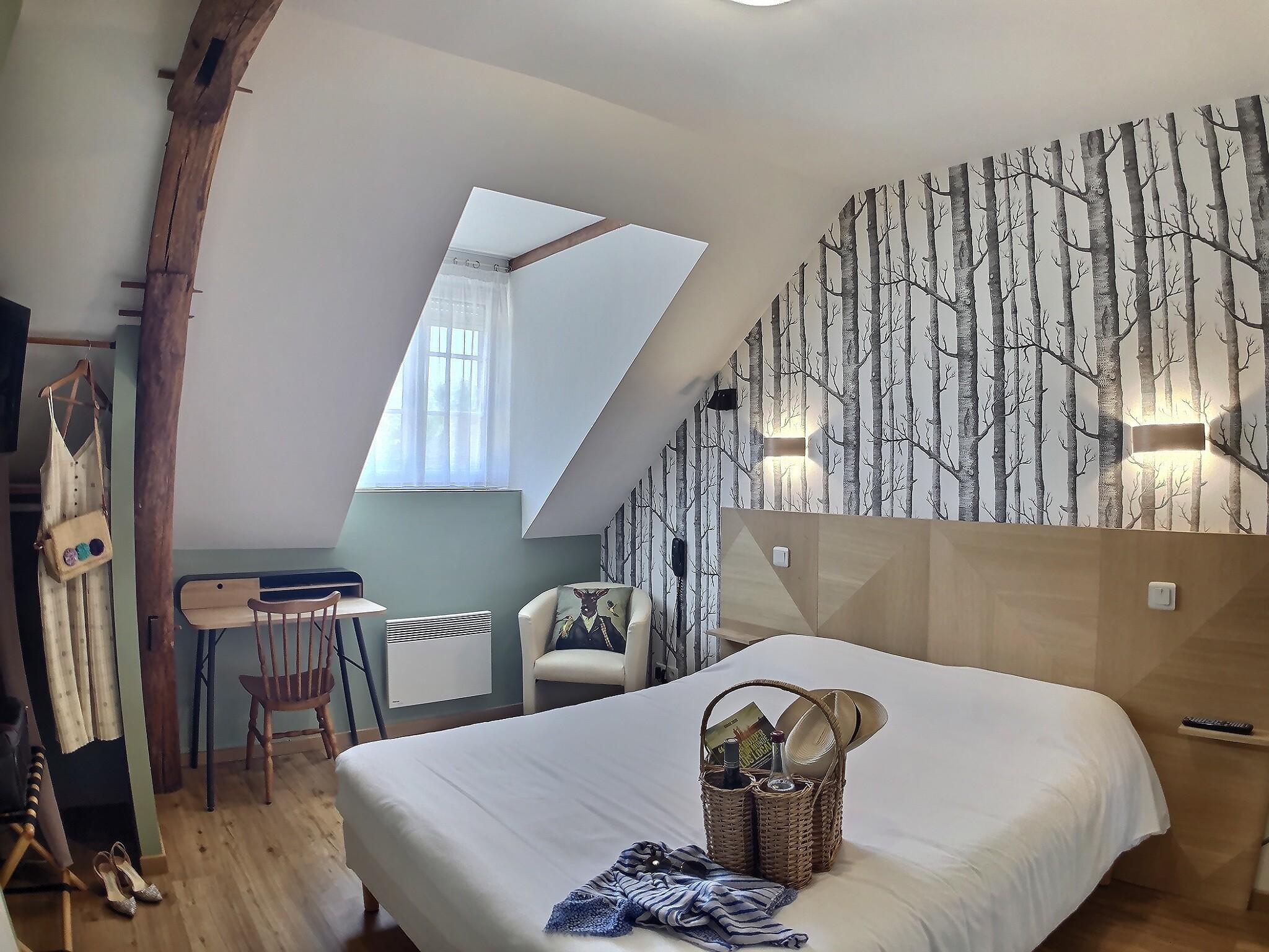 Chambre Sologne Hotel du Cygne