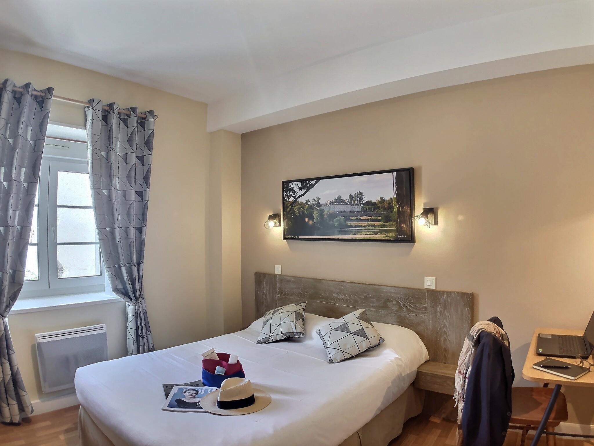 Chambre Loire Hotel du Cygne