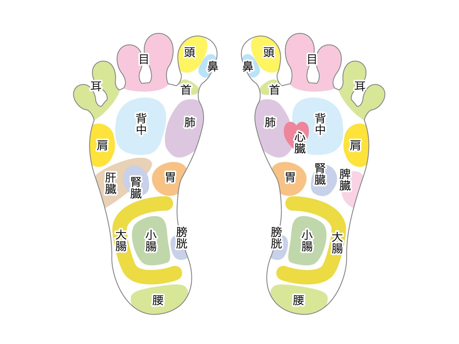 噴門部痙攣症や逆流性食道炎のときに揉むべき反射区(足つぼマッサージ) 大阪市生野区鶴橋ここはな整体院