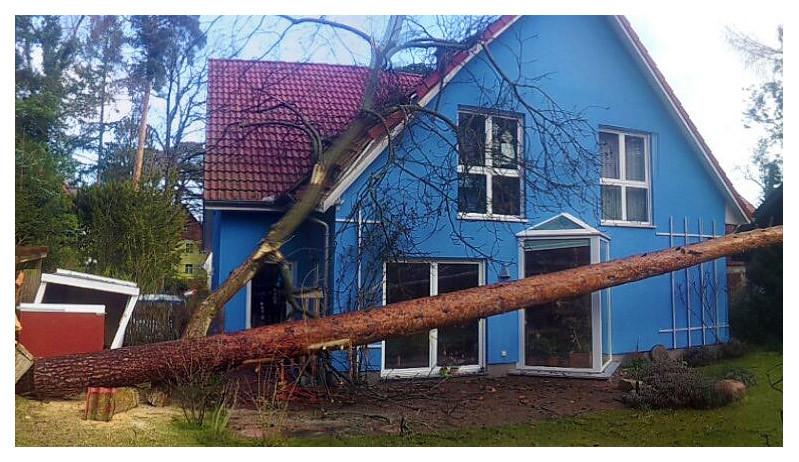 Beseitigung von Sturmschäden - Wir helfen gern und schnell