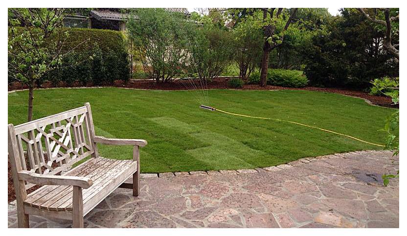 Gartengestaltung und Grünanlagenpflege