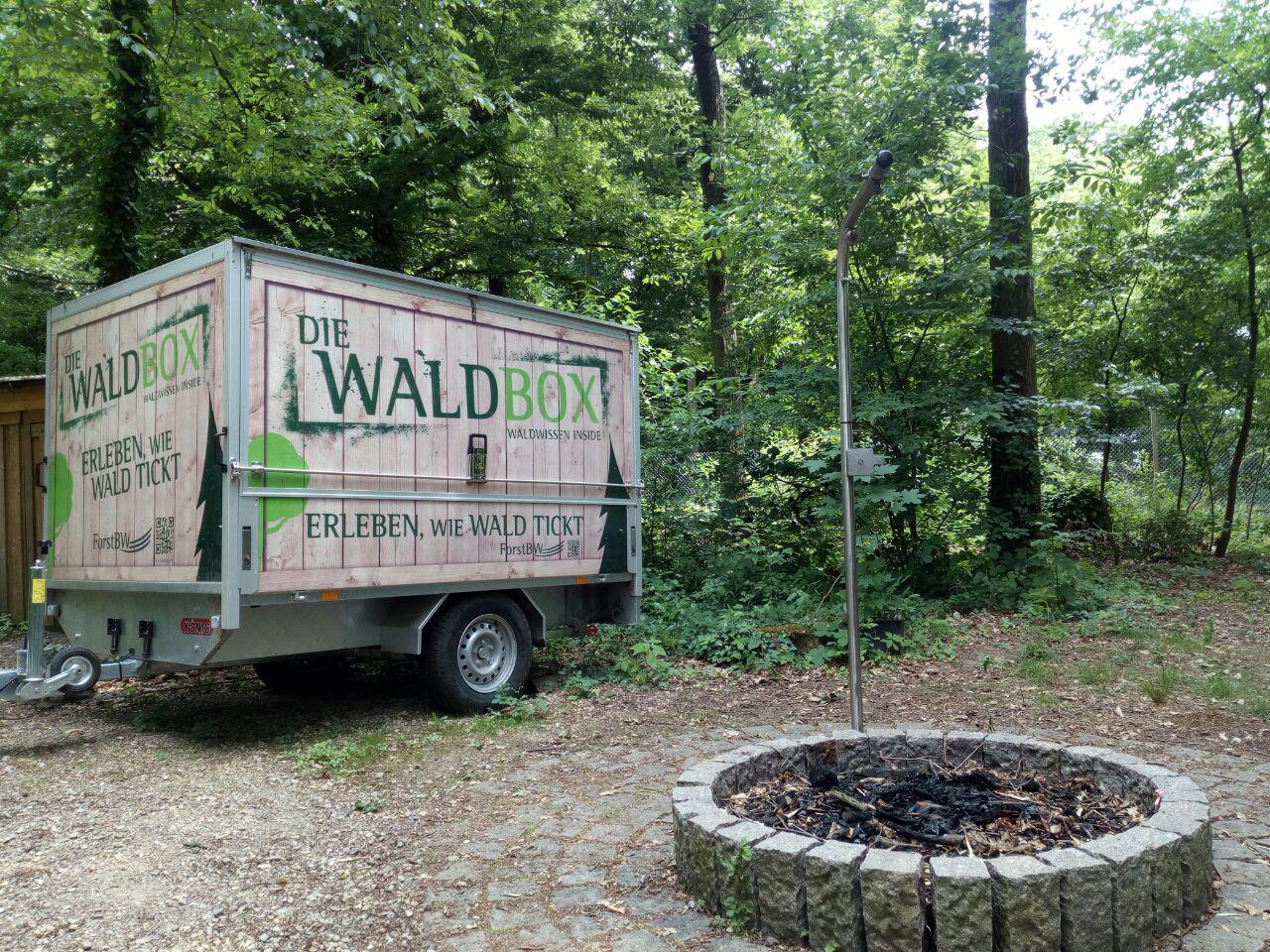 Die Waldbox - ein Tor zum Wald