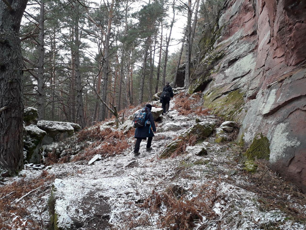 Eisenbahnfelsen im Dahner Felsenland (Pfälzer Wald 2018)