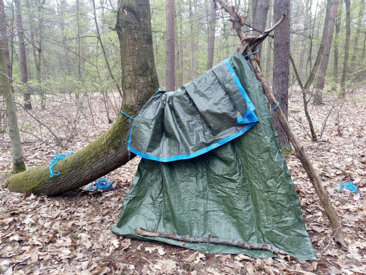 Gut entdeckt: Der gekrümmte Stamm als Unterkunft für die beiden jüngsten Waldläufer.