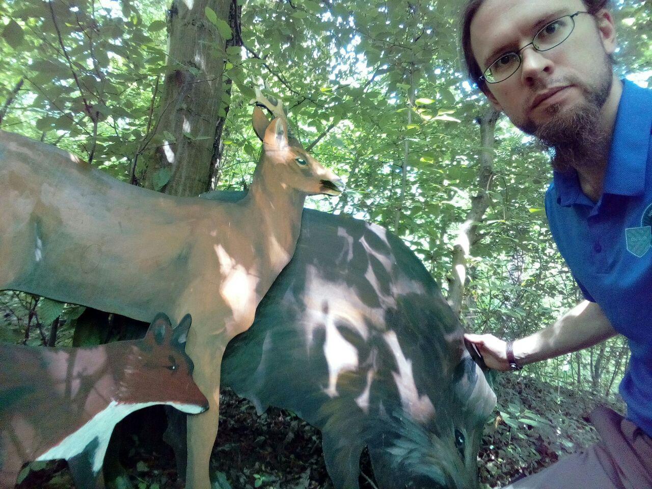 Wer ist die größte Wildsau im Wald?