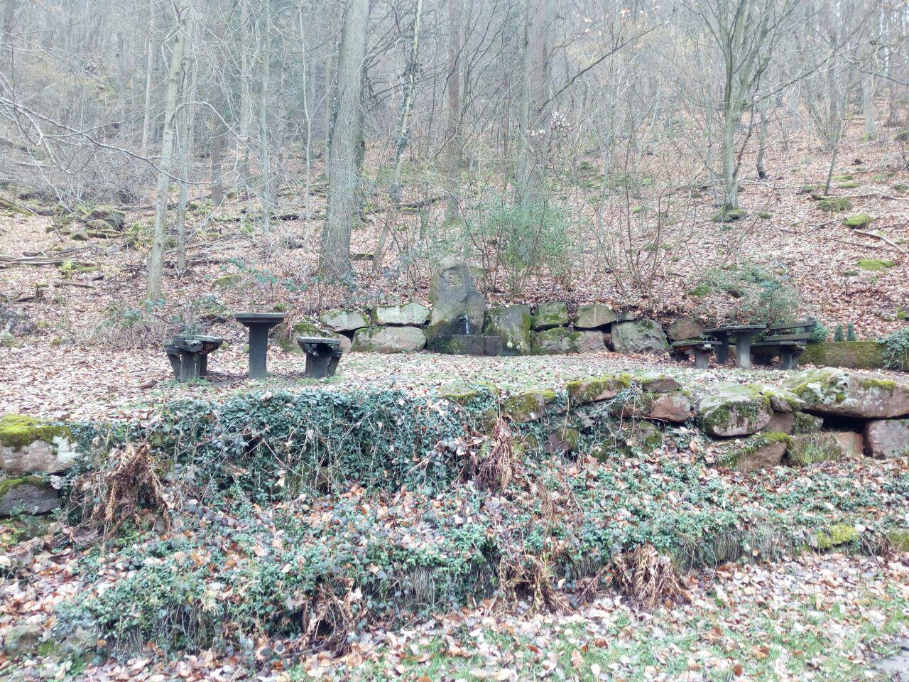 Quelle und Rastplatz am Wegensrand. (Februar)