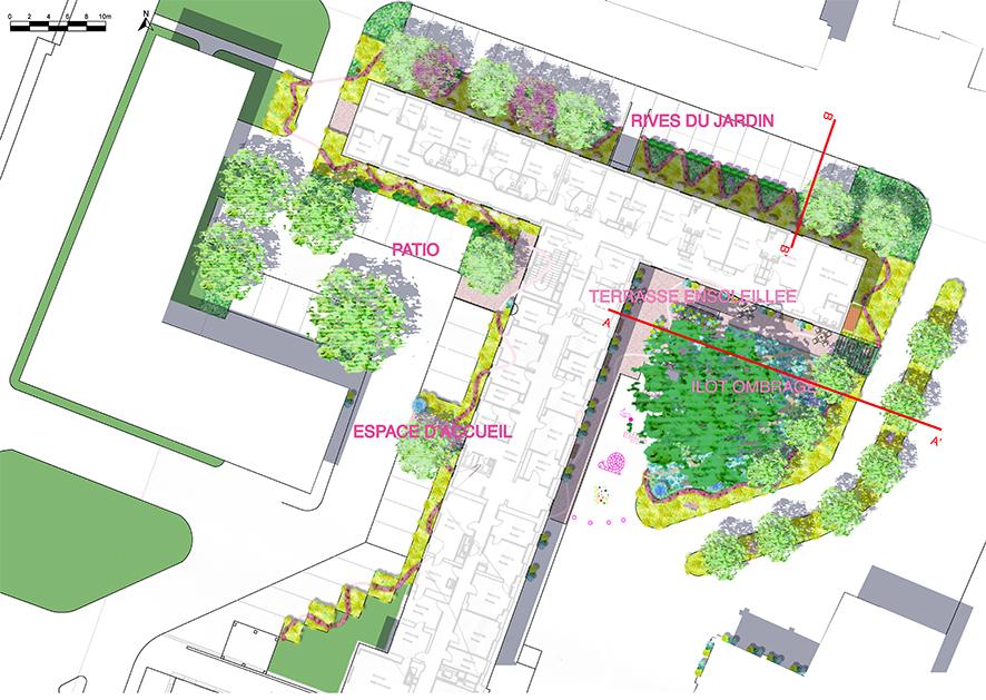 Avant-projet - Plan masse avec les houppiers des arbres et les noms des futurs espaces