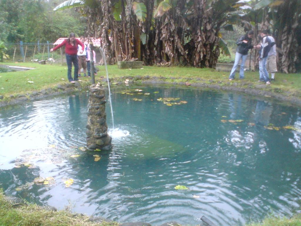 Pesca de trucha balneario valle escondido for Estanque de truchas